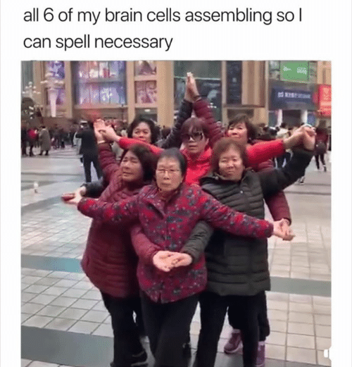 Brain, Can, and All: all 6 of my brain cells assembling so l  can spell necessary
