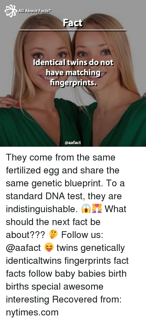 All about facts fact identical twins do not have matching memes and dna all about facts fact identical twins do not have malvernweather Images