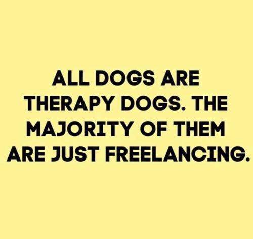 Dank, Dogs, and 🤖: ALL DOGS ARE  THERAPY DOGS. THE  MAJORITY OF THEM  ARE JUST FREELANCING