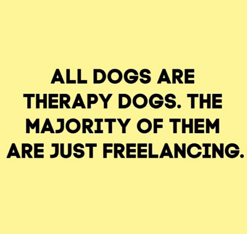 Dogs, Them, and All: ALL DOGS ARE  THERAPY DOGS. THE  MAJORITY OF THEM  ARE JUST FREELANCING.