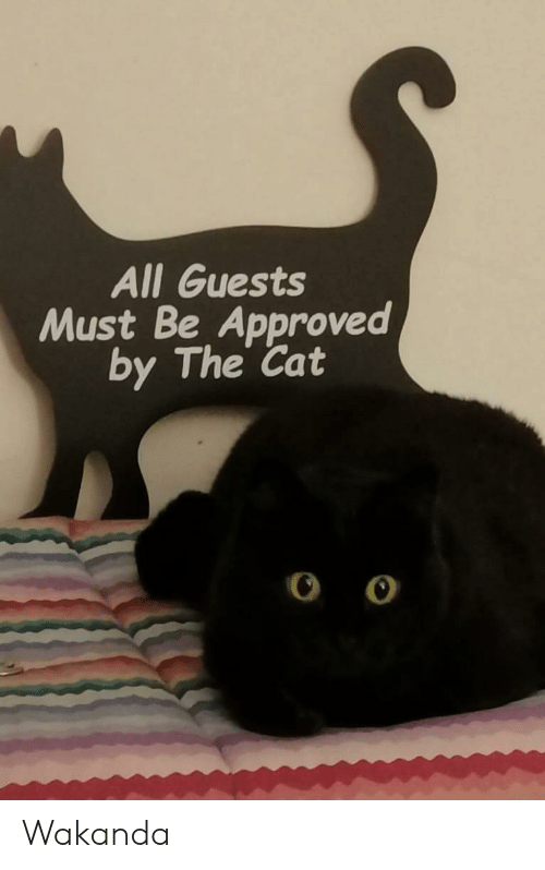 Marvel Comics, Approved, and Cat: All Guests  Must Be Approved  by The Cat Wakanda