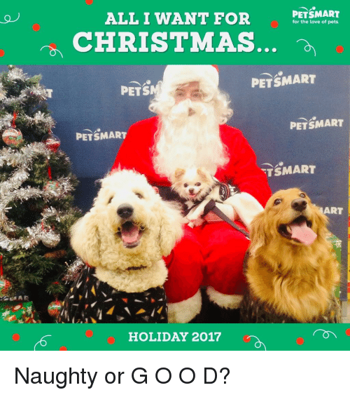 Petsmart Christmas Hours.All I Want For Petsmart For The Love Of Pets Christmas Pets