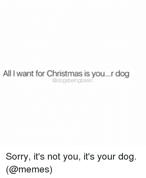 Memes, 🤖, and Dog-Meme: All l want for Christmas is you...r dog  @dogsbeingbasic Sorry, it's not you, it's your dog. (@memes)