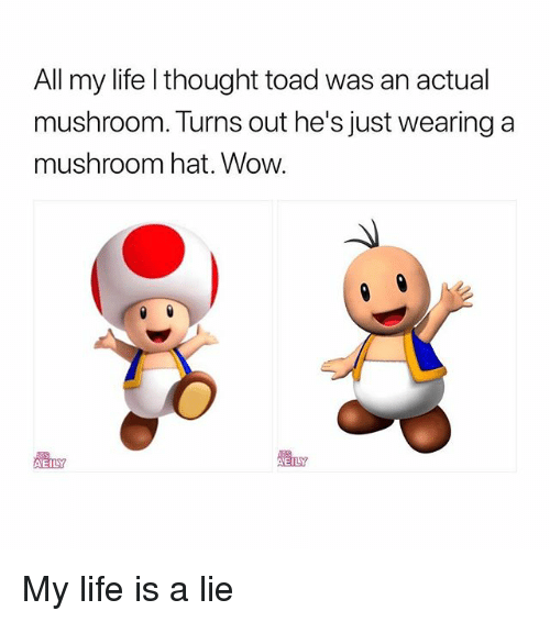 Life, Wow, and Girl Memes: All my life l thought toad was an actual  mushroom. Turns out he's just wearing a  mushroom hat. Wow.  EIL My life is a lie