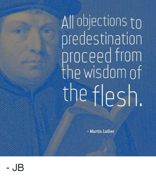 did martin luther believe in predestination