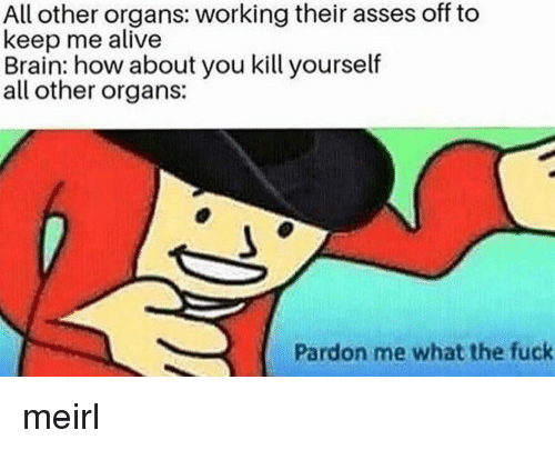Alive, Brain, and Fuck: All other organs: working their asses off to  keep me alive  Brain: how about you kill yourself  all other organs:  Pardon me what the fuck meirl