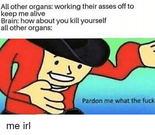 Alive, Brain, and Fuck: All other organs: working their asses off to  keep me alive  Brain: how about you kill yourself  all other organs:  Pardon me what the fuck me irl