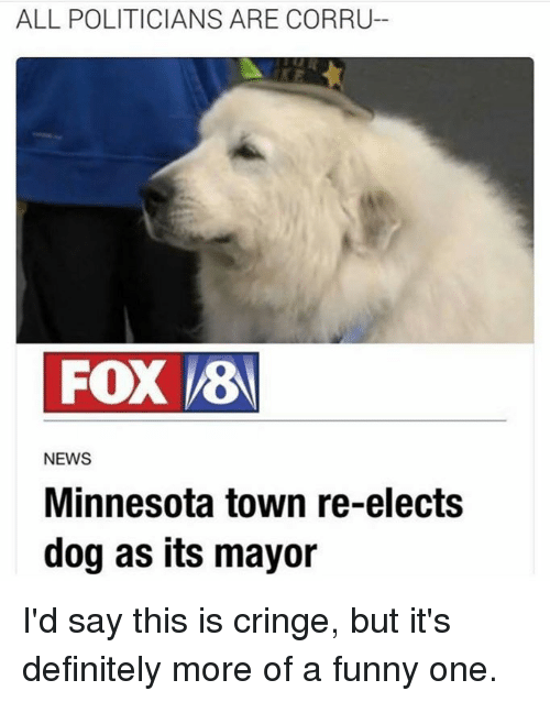 Dank, Definitely, and Dogs: ALL POLITICIANS ARE CORRU-  FOX VES  NEWS  Minnesota town re-elects  dog as its mayor I'd say this is cringe, but it's definitely more of a funny one.