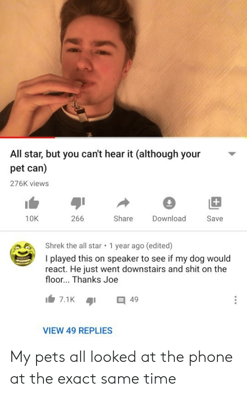 All Star, Phone, and Shrek: All star, but you can't hear it (although your  pet can)  276K views  +  266  Share  10K  Download  Save  Shrek the all star  1 year ago (edited)  I played this on speaker to see if my dog would  react. He just went downstairs and shit on the  floor... Thanks Joe  7.1K  49  VIEW 49 REPLIES My pets all looked at the phone at the exact same time
