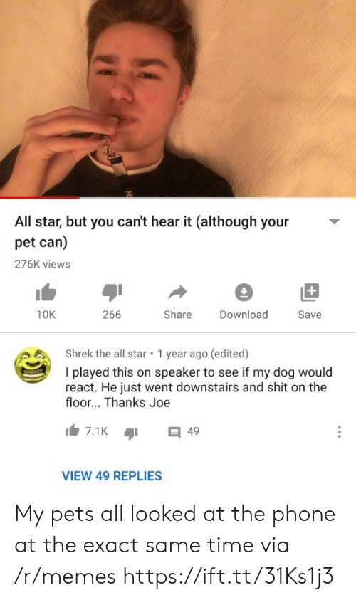 All Star, Memes, and Phone: All star, but you can't hear it (although your  pet can)  276K views  +  266  Share  10K  Download  Save  Shrek the all star  1 year ago (edited)  I played this on speaker to see if my dog would  react. He just went downstairs and shit on the  floor... Thanks Joe  7.1K  49  VIEW 49 REPLIES My pets all looked at the phone at the exact same time via /r/memes https://ift.tt/31Ks1j3