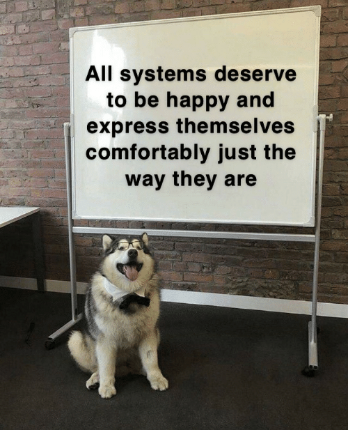 Express, Happy, and Be Happy: All systems deserve  to be happy and  express them seIves  comfortably just the  way they are