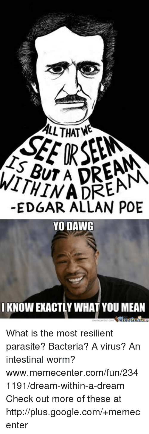 what does a dream within a dream mean
