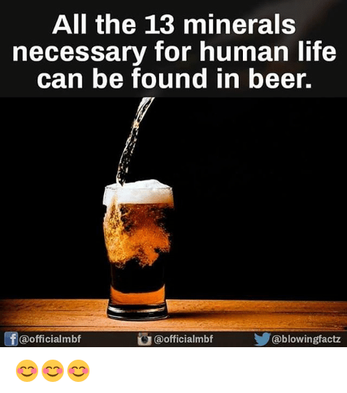 Beer, Life, and Memes: All the 13 minerals necessary for human life can