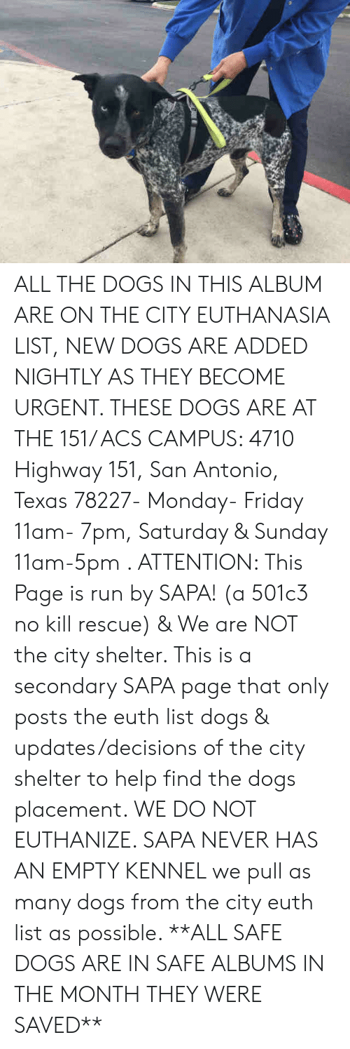 Dogs, Friday, and Memes: ALL THE DOGS IN THIS ALBUM ARE ON THE CITY EUTHANASIA LIST, NEW DOGS ARE ADDED NIGHTLY AS THEY BECOME URGENT.  THESE DOGS ARE AT THE 151/ ACS CAMPUS: 4710 Highway 151, San Antonio, Texas 78227- Monday- Friday 11am- 7pm, Saturday & Sunday 11am-5pm  .                                                                                                                                                                                                                                                     ATTENTION: This Page is run by SAPA! (a 501c3 no kill rescue) & We are NOT the city shelter. This is a secondary SAPA page that only posts the euth list dogs & updates/decisions of the city shelter to help find the dogs placement. WE DO NOT EUTHANIZE.  SAPA NEVER HAS AN EMPTY KENNEL we pull as many dogs from the city euth list as possible.      **ALL SAFE DOGS ARE IN SAFE ALBUMS IN THE MONTH THEY WERE SAVED**