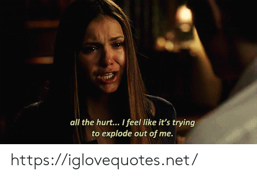 All The, Net, and All: all the hurt... I feel like it's trying  to explode out of me. https://iglovequotes.net/