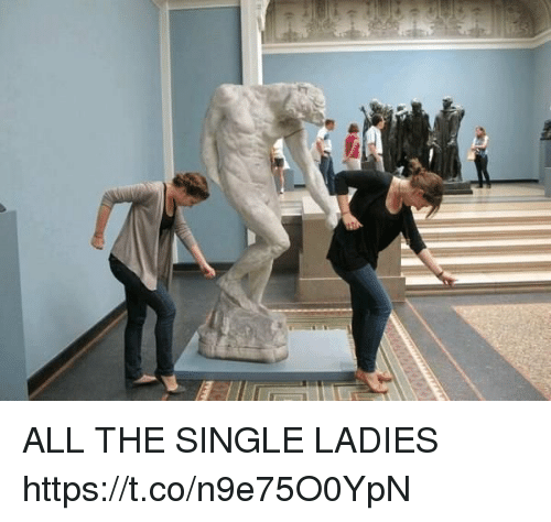 Girl Memes, Single, and All The: ALL THE SINGLE LADIES https://t.co/n9e75O0YpN