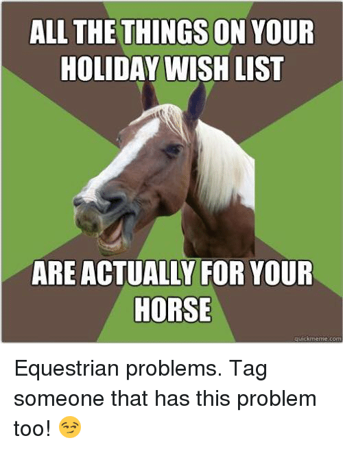 Horses, Memes, and Horse: ALL THE THINGS ON YOUR  HOLIDAY WISH LIST  ARE ACTUALLY FOR YOUR  HORSE  quick meme com Equestrian problems. Tag someone that has this problem too! 😏