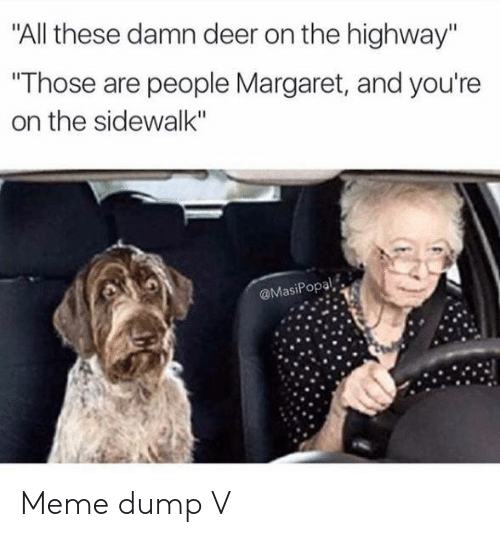 "Deer, Meme, and Highway: ""All these damn deer on the highway""  ""Those are people Margaret, and you're  on the sidewalk""  @MasiPopal Meme dump V"