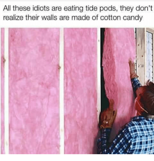 Candy, Memes, and 🤖: All these idiots are eating tide pods, they don't  realize their walls are made of cotton candy