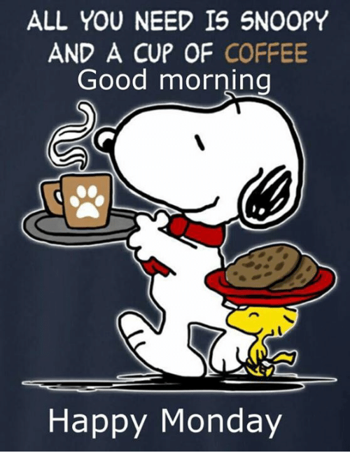 Memes, Good Morning, and Coffee: ALL YOU NEED IS SNOOPY  AND A CUP OF COFFEE  Good morning  Happy Monday