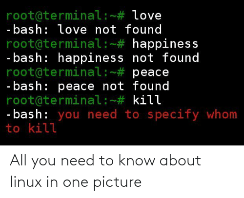 Linux, One, and All: All you need to know about linux in one picture