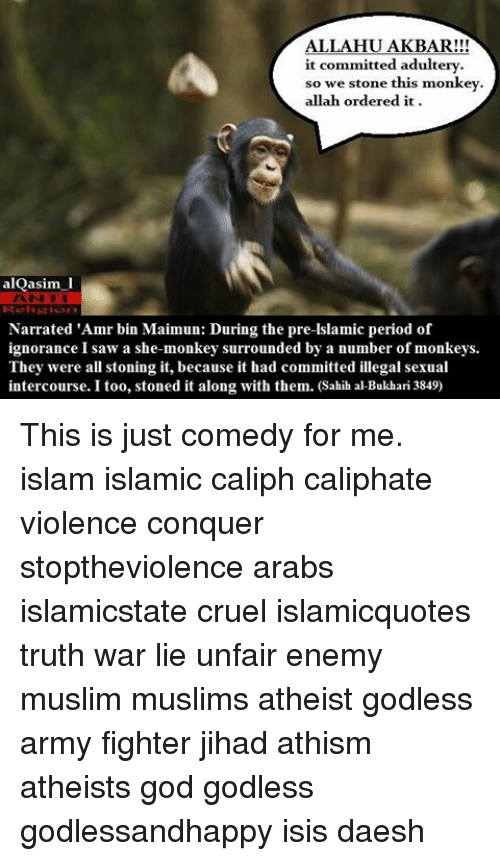 ALLAHUAKBAR!!! It Committed Adultery So We Stone This Monkey