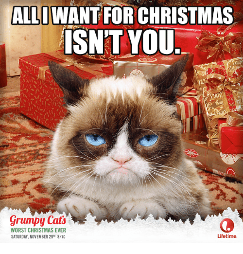 Memes, Ally, and Lifetime: ALLI WANT FOR CHRISTMAS ISNT YOU grumpy Cats WORST