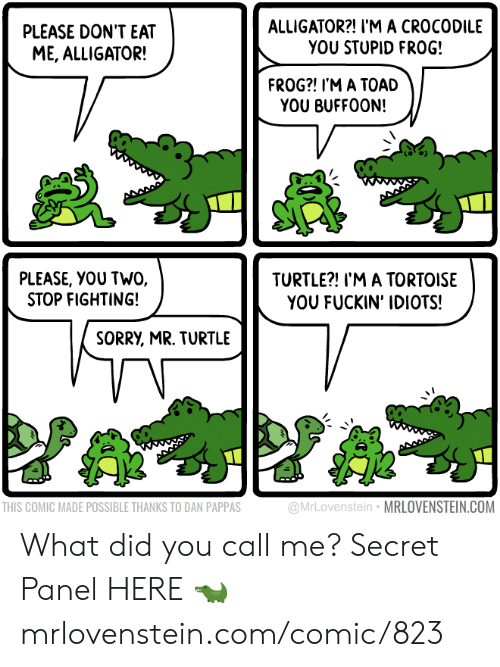 Memes, Sorry, and Alligator: ALLIGATOR?! I'M A CROCODILE  YOU STUPID FRO0G!  PLEASE DON'T EAT  ME, ALLIGATOR!  FROG?! I'M A TOAD  YOU BUFFOON!  PLEASE, YOU TWO,  STOP FIGHTING!  TURTLE?! I'M A TORTOISE  YOU FUCKIN' IDIOTS!  SORRY, MR. TURTLE  @MrLovenstein MRLOVENSTEIN.COM  THIS COMIC MADE POSSIBLE THANKS TO DAN PAPPAS What did you call me?  Secret Panel HERE 🐊 mrlovenstein.com/comic/823