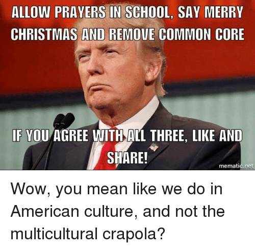 Memes, Common, and Merry Christmas: ALLOW PRAYERS IN SCHOOL, SAY MERRY  CHRISTMAS AND REMOVE COMMON CORE  IF YOU AGREE WITH ALL THREE, LIKE AND  SHARE!  memat  net Wow, you mean like we do in American culture, and not the multicultural crapola?