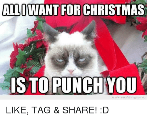 Funny Grumpy Cat Christmas Memes.Allowant For Christmas Is To Punch You Www Very Funny Pcs