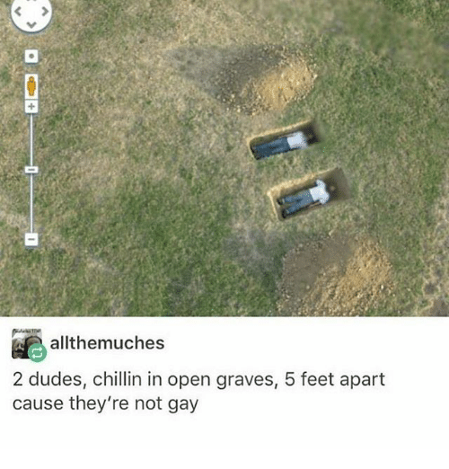 Memes, 🤖, and Feet: allthemuches  2 dudes, chillin in open graves, 5 feet apart  cause they're not gay