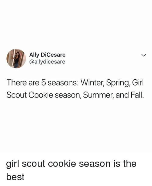 Fall, Winter, and Summer: Ally DiCesare  @allydicesare  There are 5 seasons: Winter, Spring, Girl  Scout Cookie season, Summer, and Fall. girl scout cookie season is the best