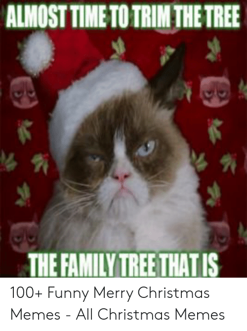 Family Christmas Meme Funny.Almost Time To Trim The Tree The Family Tree Thatis 100