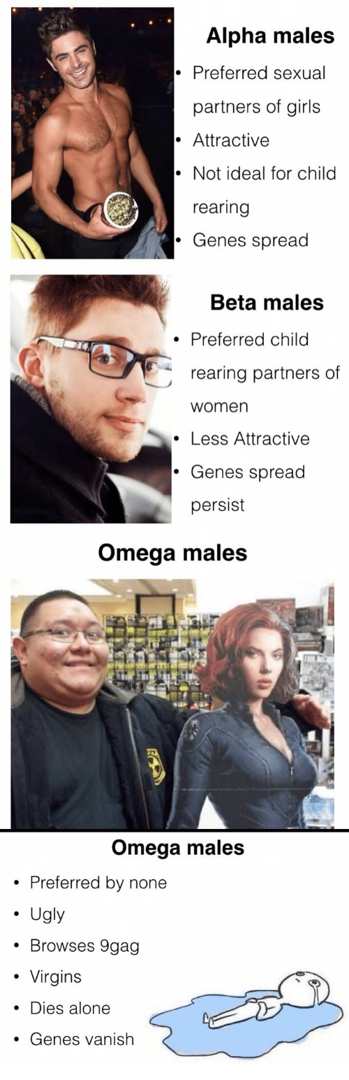 Alpha males and beta males
