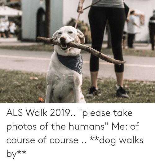 """Als, Dog, and Photos: ALS Walk 2019.. """"please take photos of the humans"""" Me: of course of course .. **dog walks by**"""