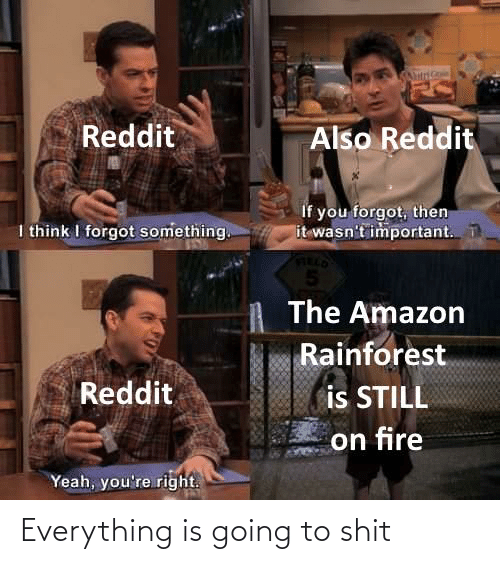 Amazon, Fire, and Reddit: Also Reddit  Reddit  If you forgot, then  it wasn't important.  I think I forgot something.  The Amazon  Rainforest  Reddit  is STILL  on fire  Yeah, you're right. Everything is going to shit