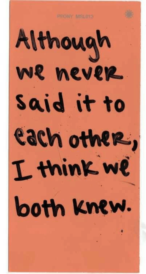 Never, Think, and Each Other: Although  we never  Said it to  each other-,  L think we  both Knew.