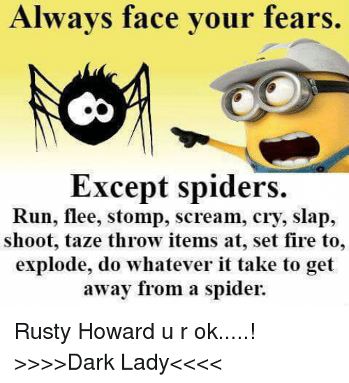 Always Face Your Fears Except Spiders Run Flee Stomp Scream