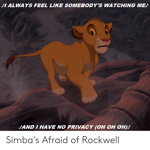 Reddit, Rockwell, and Like: ALWAYS FEEL LIKE SOMEBODY'S WATCHING ME  SAND I HAVE NO PRIVACY (OH OH OH) Simba's Afraid of Rockwell
