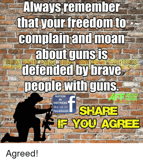 Memes, Brave, and Braves: Always remember  that your freedom to  complain and moan  about guns  defended by brave  people with guns.  NATION  IN  DISTRESS  like us on  SHARE  facebook  YOU AGREE Agreed!