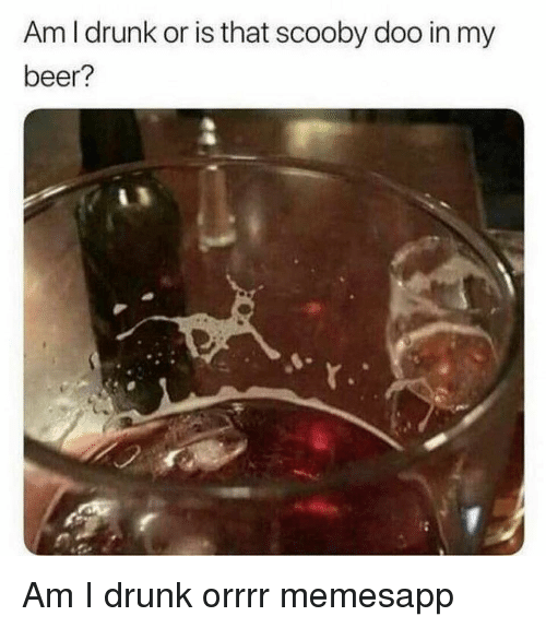 Beer, Drunk, and Memes: Am I drunk or is that scooby doo in my  beer? Am I drunk orrrr memesapp