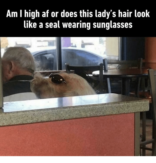 Af, Dank, and Hair: Am I high af or does this lady's hair look  like a seal wearing sunglasses