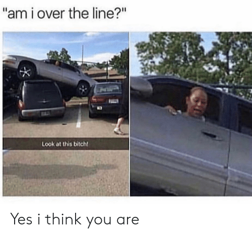 "Bitch, Yes, and Think: ""am i over the line?""  Look at this bitch Yes i think you are"