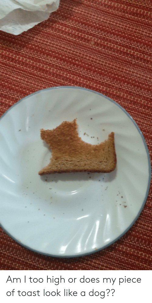 Toast, Too High, and Dog: Am I too high or does my piece of toast look like a dog??