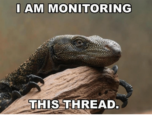 [Image: am-monitoring-this-thread-8027523.png]