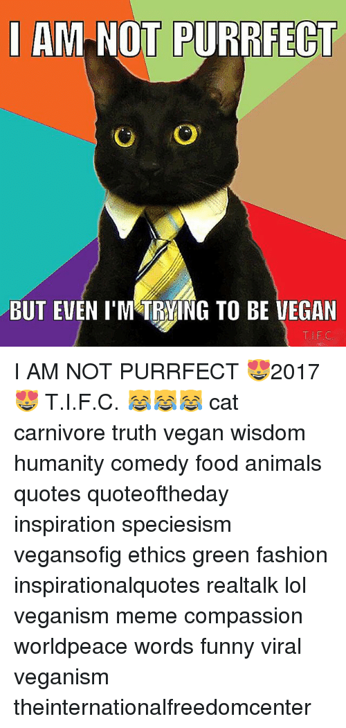 Am Not Purrfect But Even Im Trying To Be Vegan I Am Not Purrfect