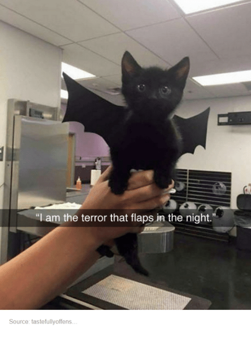 The Terror That Flaps In The Night