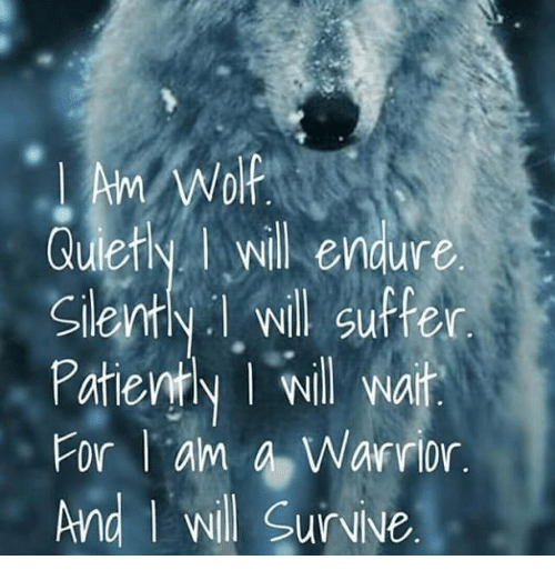 Warriors Come Out And Play Quote: Am Wolf Quietly L Will Endure Silently I Will Suffer