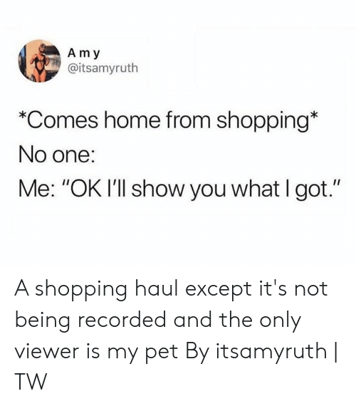 """Dank, Shopping, and Home: Am y  @itsamyruth  *Comes home from shopping*  No one:  Me: """"OK I'll show you what I got."""" A shopping haul except it's not being recorded and the only viewer is my pet  By itsamyruth 
