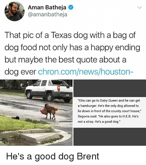 "Food, Memes, and News: Aman Batheja  @amanbatheja  That pic of a Texas dog with a bag of  dog food not only has a happy ending  but maybe the best quote about a  dog ever chron.com/news/houston-  ""Otis can go to Dairy Queen and he can get  a hamburger. He's the only dog allowed to  lie down in front of the county court house,""  Segovia said. ""He also goes to H.E.B. He's  not a stray. He's a good dog."" He's a good dog Brent"